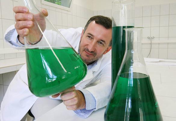 Pierre Calleja, der Erfinder des Algen-Lichts
