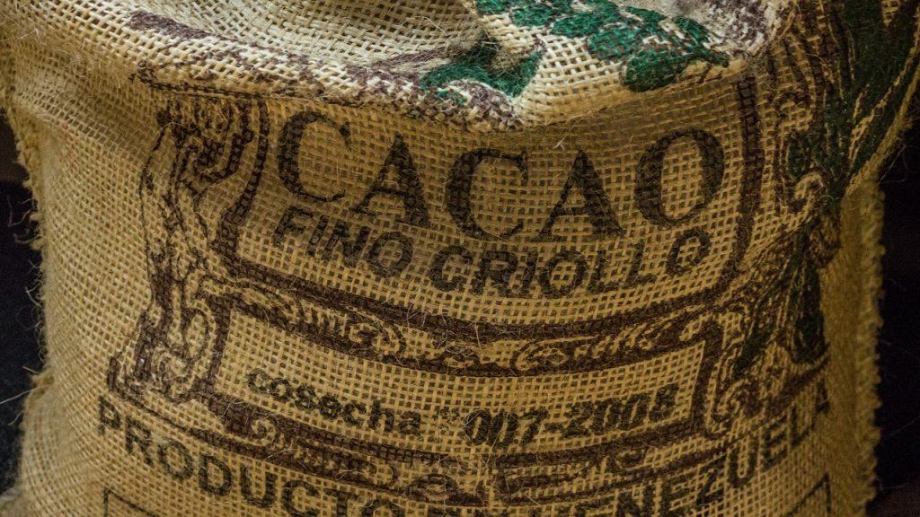my cocoa trinkschokolade criollo cacao bohnen