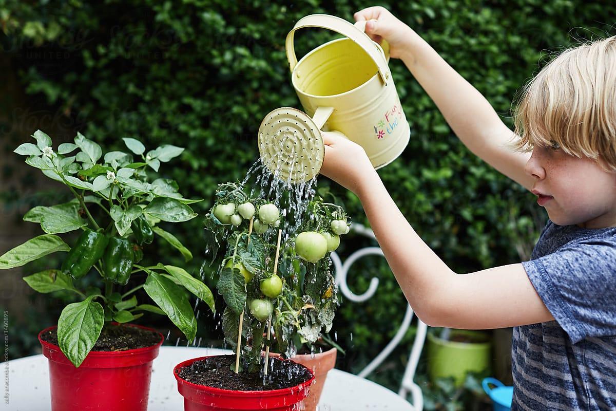 mehr gruen Urban Gardening mit Kind