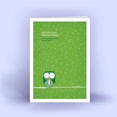 Weihnachtskarten DIN A6 5er Set Eule im Schnee grün
